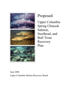 Draft Upper Columbia Salmon Recovery Plan