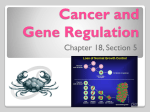 Cancer and Gene Regulation