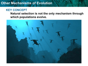 8.0-Other Mechanisms of Evolution