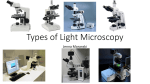 Light Microscopy 2