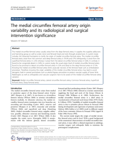 The medial circumflex femoral artery origin variability