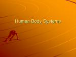 Human Body Systems - Warren County Schools