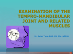 Examination of the tempro-mandibular joint and related muscles