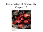 Chapter 18: Conservation of Biodiversity Ppt