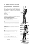 213: human functional anatomy