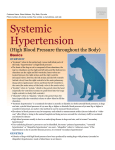 systemic_hypertension
