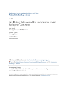 Life History Patterns and the Comparative Social Ecology of