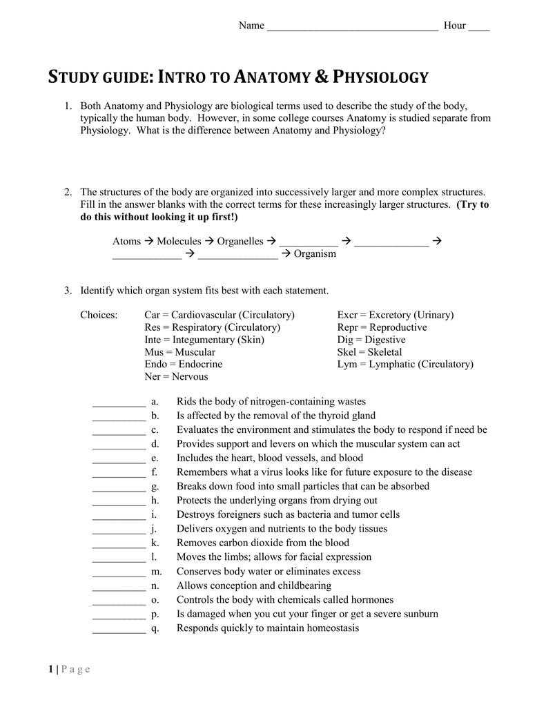 Anatomy and Physiology Intro Study Guide