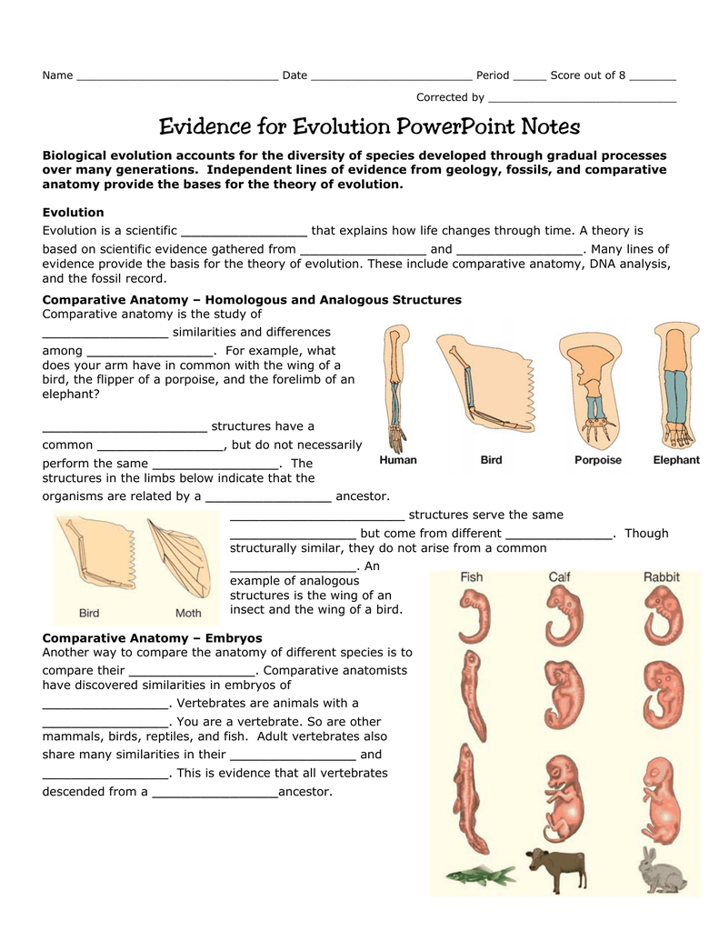 Evidence of Evolution - Northwest ISD Moodle