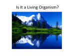 Is it a Living Organism?