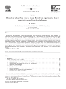 Physiology of cerebral venous blood flow: from experimental data in