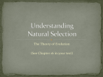Understanding Natural Selection