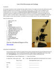 Use of the Microscope and Cytology Click for a Numbered Diagram