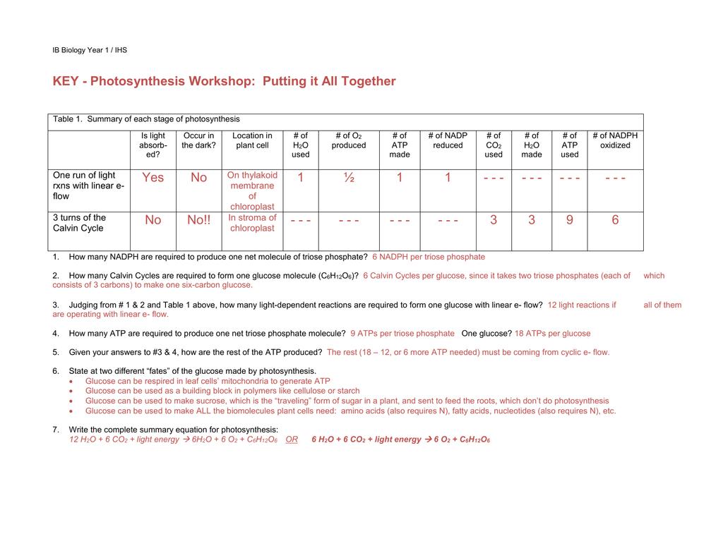 Atp Worksheet Answer Key - Nidecmege