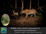 Wildlife crime and law enforcement in protected areas