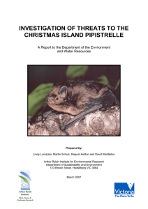 Investigation of threats to the Christmas Island Pipistrelle.