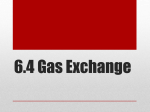 6.4 Gas Exchange - Phoenix Union High School District