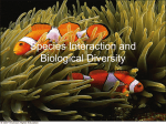 species interaction and biological diversity1