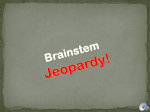 Brainstem Jeopardy!