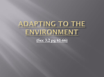 3.2 Adapting to environment