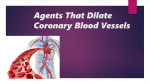 Agents That Dilate Coronary Blood Vessels