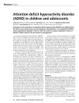 Attention deficit hyperactivity disorder (ADHD) in children and