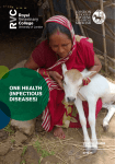 one health (infectious diseases)