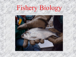 Fishery Biology