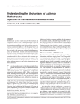Understanding the Mechanisms of Action of Methotrexate