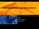 Hematopoiesis and Hemostasis