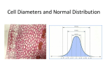 Cell Diameters and Normal Distribution