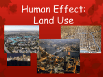 Human Effect on Land Use