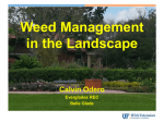 Weed Management in Landscapes