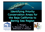 Identifying Priority Conservation Areas for the Baja California to