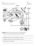 Assignment # 25 Food Web - Mr. Le`s Living Environment Webpage