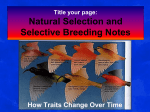 Artificial Selection - Northwest ISD Moodle
