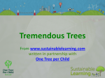 - Sustainable Learning