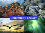 Community Ecology Structure and Species Interaction