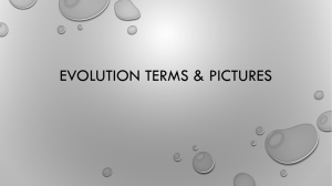 Evolution Terms and Pictures