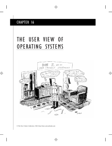 THE USER VIEW OF OPERATING SYSTEMS