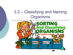 3.2 * Classifying and Naming Organisms