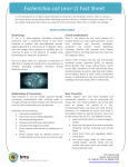 Escherichia coli (mcr-1) Fact Sheet