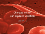 Changes in DNA can produce variation