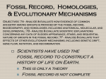 Fossil Record-Homologies-Mechanisms of Evolution