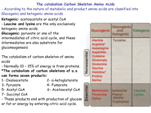 The catabolism Carbon Skeleton Amino Acids