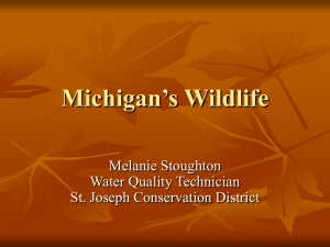 Pesticides and Wildlife - Michigan Water Stewardship Program