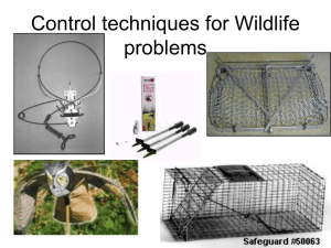 Control techniques for Wildlife problems