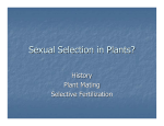 Sexual Selection in Plants?