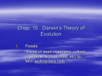 Chap. 15 Evolution Notes - Fort Thomas Independent Schools