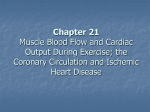 Chapter 21 Muscle Blood Flow and Cardiac Output During Exercise